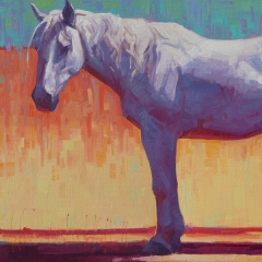Incandescent - colorful oil painting of gray white horse in bright sun