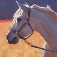 Max - colorful oil painting of gray white horse