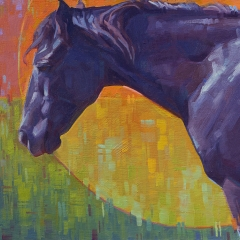 Spectrum - colorful blue black horse